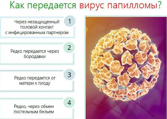 Заражение вирусом папилломы человека